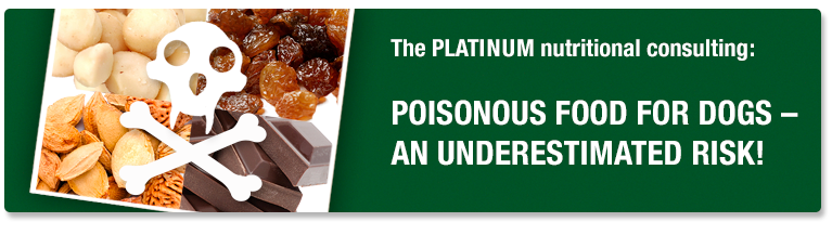 PLATINUM Nutritional Consulting - poisonous food for dogs